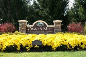 Visit Crane